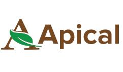 Apical
